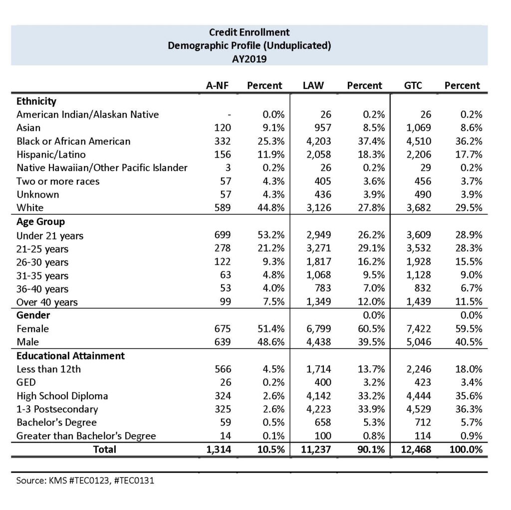 AY19 credit enrollment by demographic